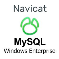 Navicat MySQL Windows Enterprise